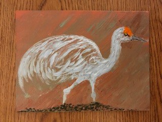 This image has an empty alt attribute; its file name is 4-sandhill-crane-6x8-1.jpg